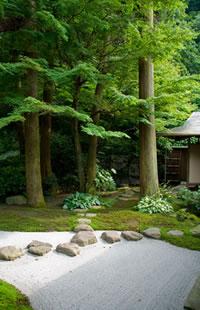 Photo Of Zen Garden