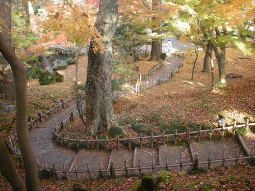 Autumn colour in Japanese garden
