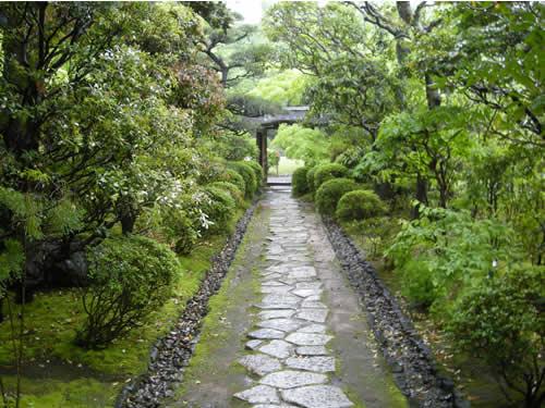 Tea Garden Roji Japanese Garden