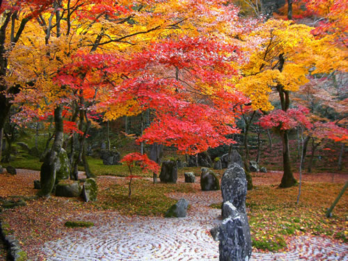 Zen garden in autumn